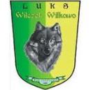 Wilczek Wilkowo
