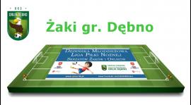 Żaki Dębno - Podział drużyn na turniej -DMLPN