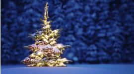 Najserdeczniejsze życzenia szczęśliwych i radosnych Świąt Bożego Narodzenia...