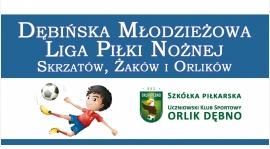 Dębińska Młodzieżowa Liga Piłki Nożnej Skrzatów, Żaków i Orlików