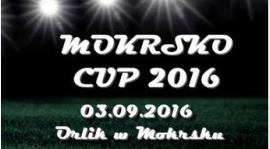 Turniej Dzikich Drużyn w piłkę nożną - Mokrsko Cup 2016!