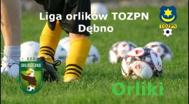 Liga Młodych Orłów - Turniej Orlików w Dębnie