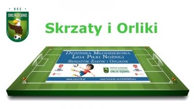 Drużyny UKS Orlik  na turniej DMLPN - Skrzaty i Orliki