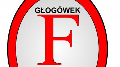 """Walne Nadzwyczajne zebranie członków KS """"Fortuna"""" Głogówek 26.11.2016"""