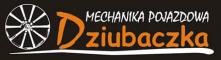 Krzysztof Dziubaczka - Mechanika pojazdowa