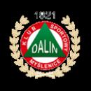 Dalin Myślenice