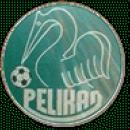 Pelikan Dębno Polskie