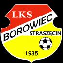 LKS Borowiec Straszęcin