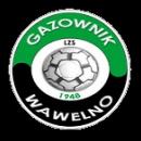 Gazownik Wawelno
