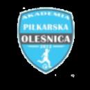 AP Oleśnica