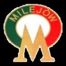 Tur Milejów
