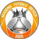Akademia Futbolu Brzoza