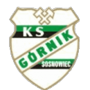 Górnik Sosnowiec