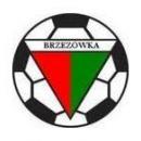KS Brzezówka