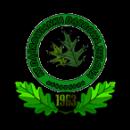 Dąbrowianka Dąbrowa Zielona