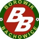 Borowik Bachowice