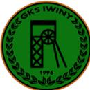Gminny Klub Sportowy Iwiny