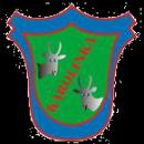 Karolinka Koziegłowy