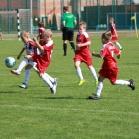 Goglin Cup 2016
