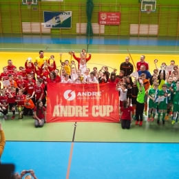 "ROCZNIK 2007: Puchar ""ANDRE CUP 2017"" 26.02.2017"