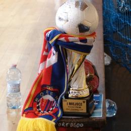 BEKO Cup 2015 w Poznaniu