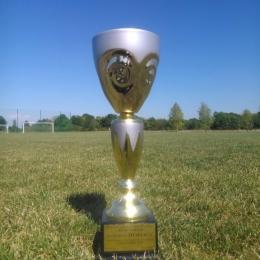 Puchar za sezon 14/15