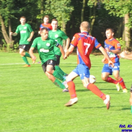 Puchar Polski EKO - LKS