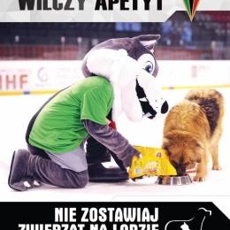 Nie zostawiaj zwierząt na lodzie