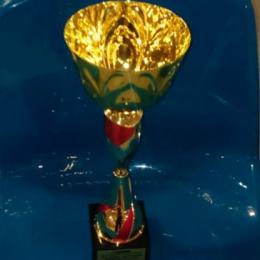 Turniej rocznika 2000 w Somoninie