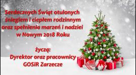 Wesołych Świąt Bożego Narodzenia oraz Szczęśliwego Nowego Roku !