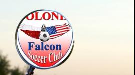 Polonia Falcon pod lupą !