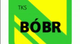 Remis z Bobrem
