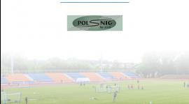 Polsnig sp. z o.o. razem z Błękitnymi