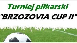 Brzozovia Cup 2017