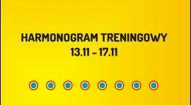 Harmonogram treningowy 13-17.11