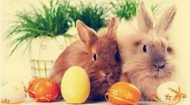 Życzenia Wielkanocne ...