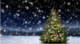 Niech te Święta będą wyjątkowe!