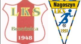 Brzeźnica - Nagoszyn   0 - 2  (0-1)