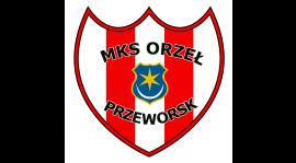 INFO: Zmiana terminu meczu Wisłoka Dębica - Orzeł