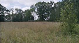 Był taki klub - Jegrznia Rajgród. Dziś zostało po nich pastwisko