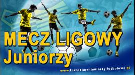 1 Kolejka: Stal Gorzyce - LZS Zdziary 6:0.