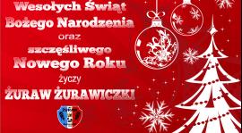 Wesołych Świąt Bożego Narodzenia !