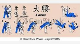 Harmonogram zajęć z Judo - Styczeń 2018