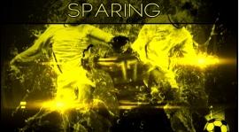 SPARING 2.02.2017r.
