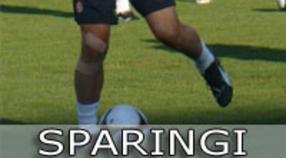Sparingi przed nowym sezonem 2014/2015