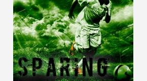SPARING NUMER 5