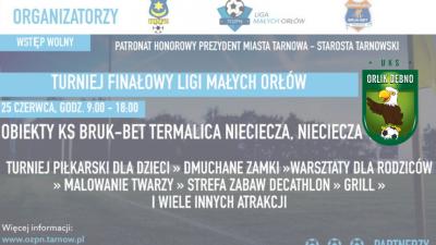 Turniej Finałowy Ligi Małych Orłów