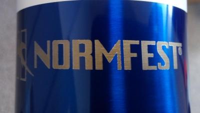 Normfest wspiera nasz zespół!
