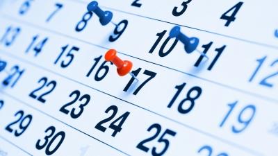 Harmonogram zajęć w 2 tygodniu ferii