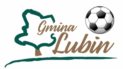 Zmiana hali - Gminny Turniej Halowej Piłki Nożnej o Puchar Przewodniczącego Rady Gminy Lubin - 2018